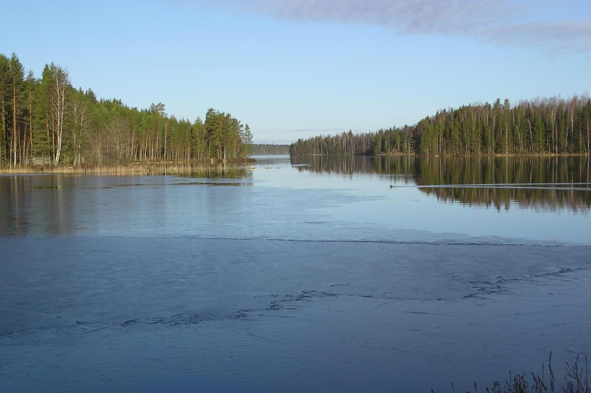 Vesijako-järveä