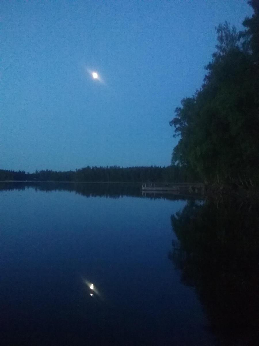Öinen kuutamo - Palsanniemi