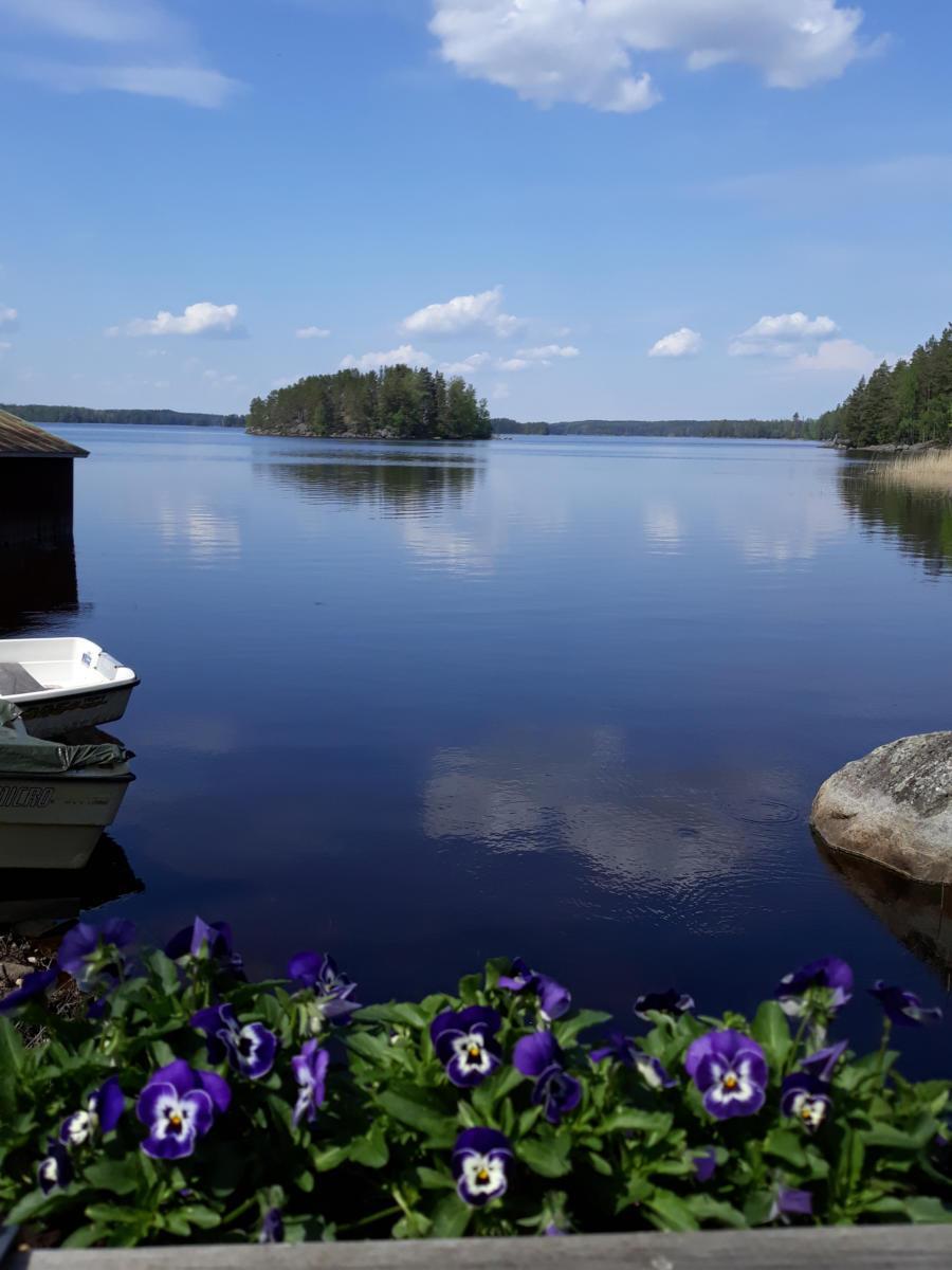 Veden peilityyneys -Sepänniemi